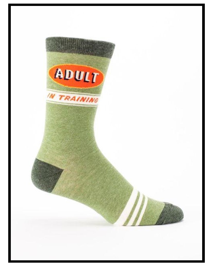 Image of a sock that says Adult in Training